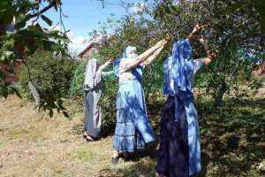 Сестры милосердия совершили трудовую поездку в в монастырь Архангела Михаила